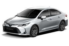 Toyota Corolla com fundo branco
